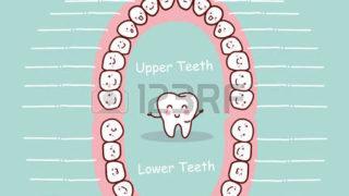 歯が歯がぁ~~~~~!