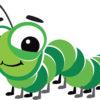 無農薬野菜を買ったら虫がついてくるのは当たり前じゃないのか?