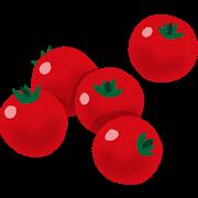 カラフルトマトのセットをご購入